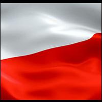 (BIM) Chatbox+ - Polish translation